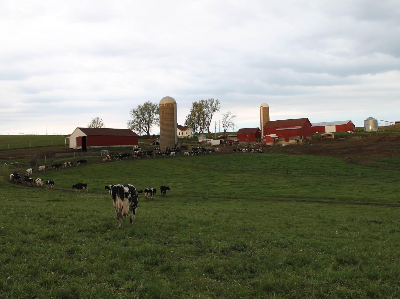 Sam and Don Frei farm